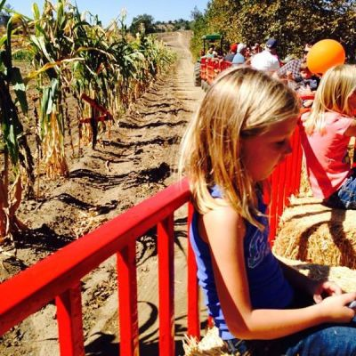 Win Tickets to Zoomars Petting Zoo & Bates Nut Farm