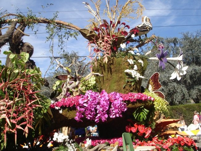 see rose parade floats