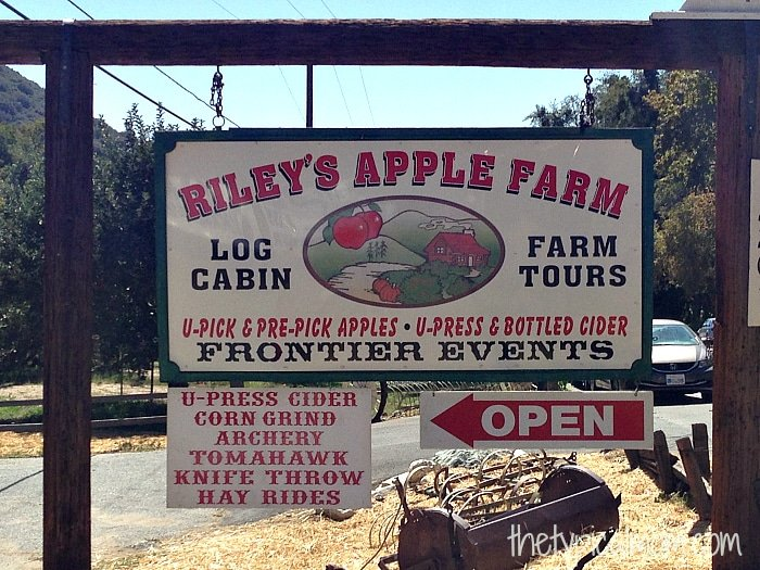Riley's Apple Farm