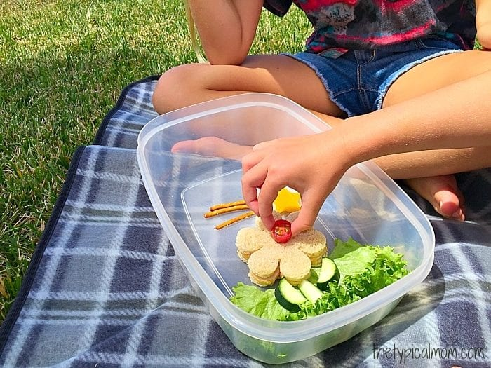 Fun lunch ideas for kids.
