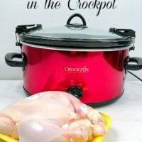 whole chicken in crockpot