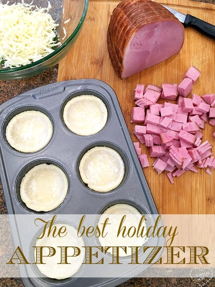 Leftover baked ham recipe that's our favorite!! Great as a holiday appetizer or dinner using your leftover ham from Easter or Christmas!!