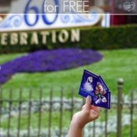 How to Get Into Disneyland for Free
