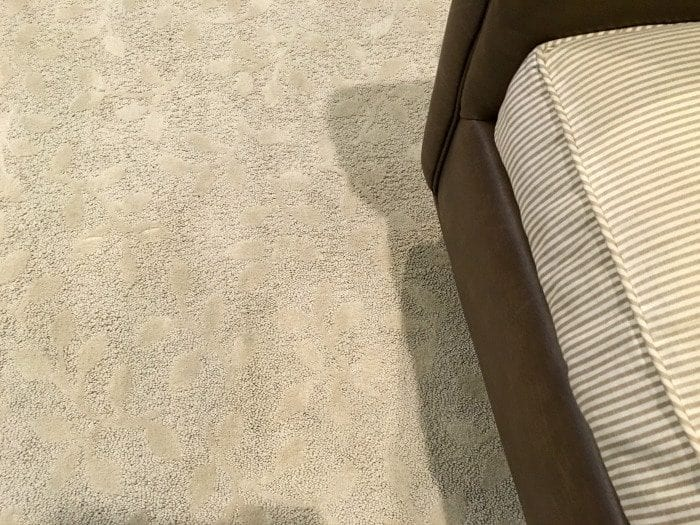 temecula carpet cleaning