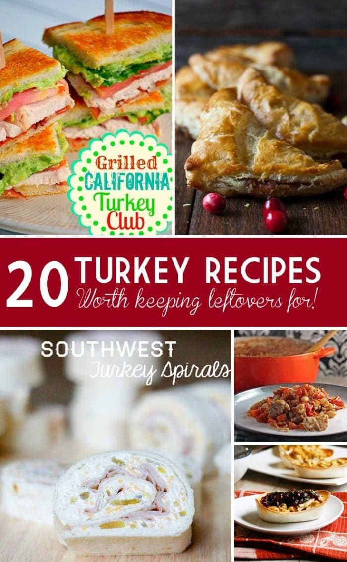 turkey meat recipes