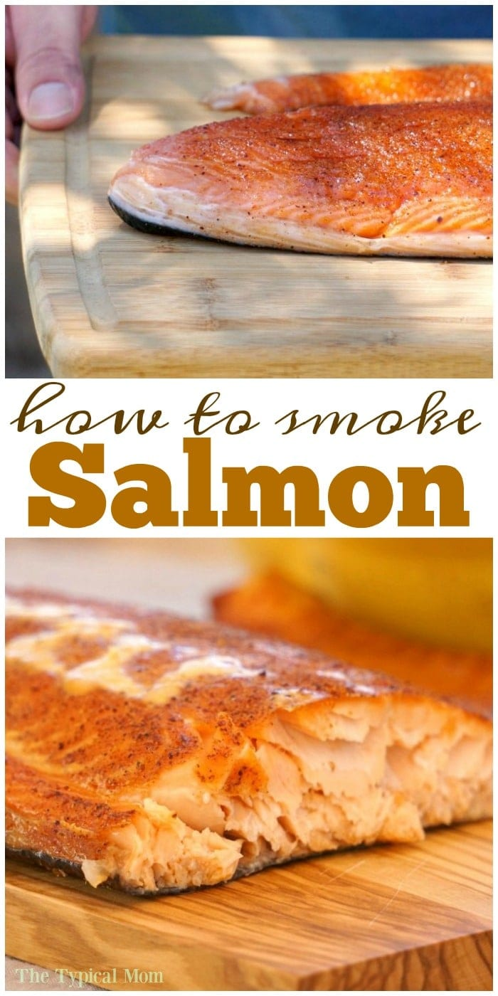 How to smoke salmon the typical mom for Best fish to smoke