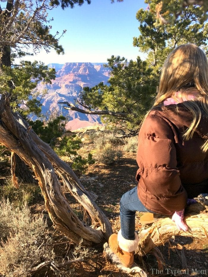 grand-canyon-az