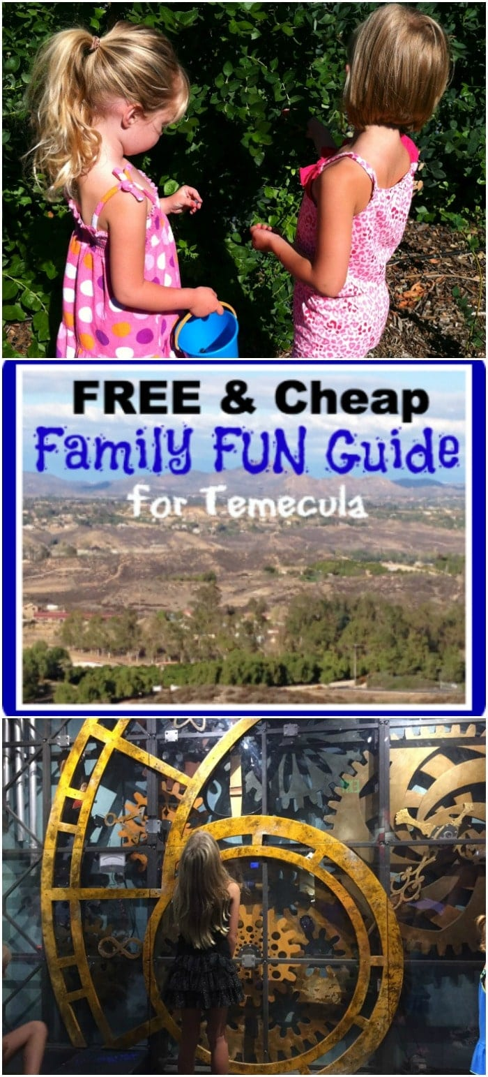 Something To Celebrate: Temecula · The Typical Mom