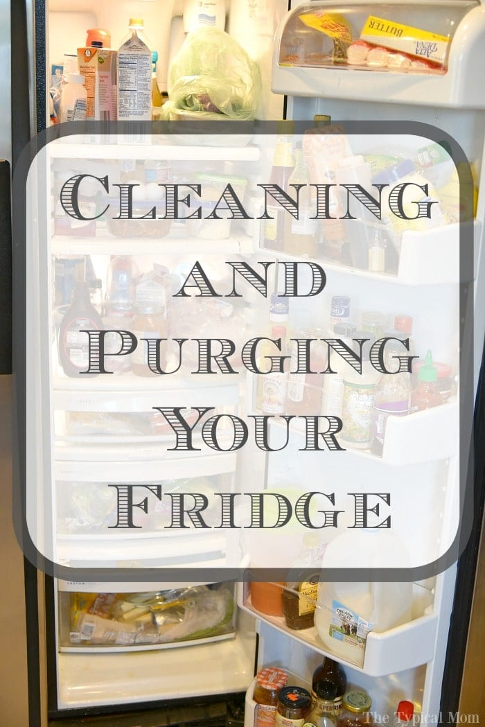 cleaning your refrigerator