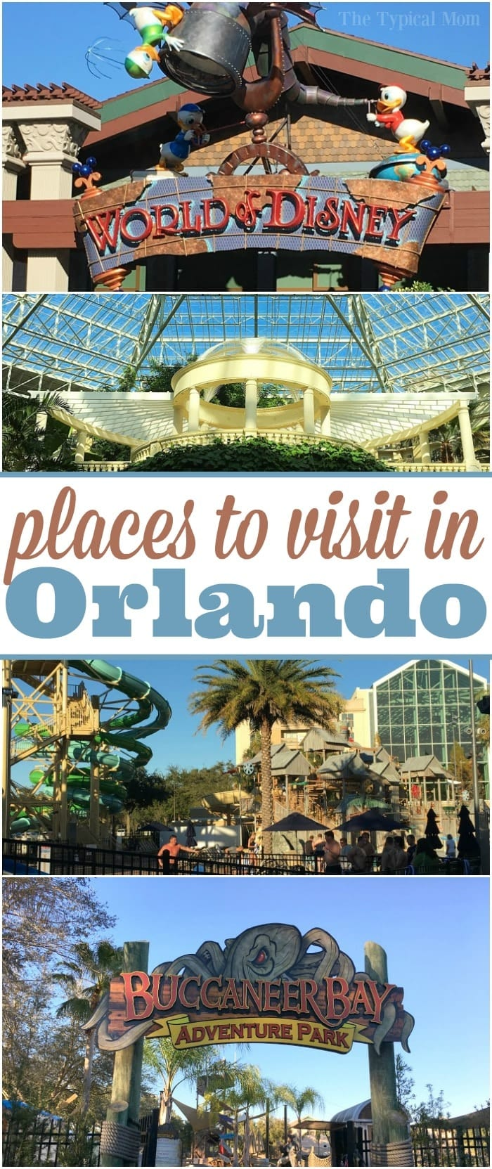 The best places to visit in Orlando Florida and where to go to get discount tickets to amusement parks there as well as cheap hotel stays.