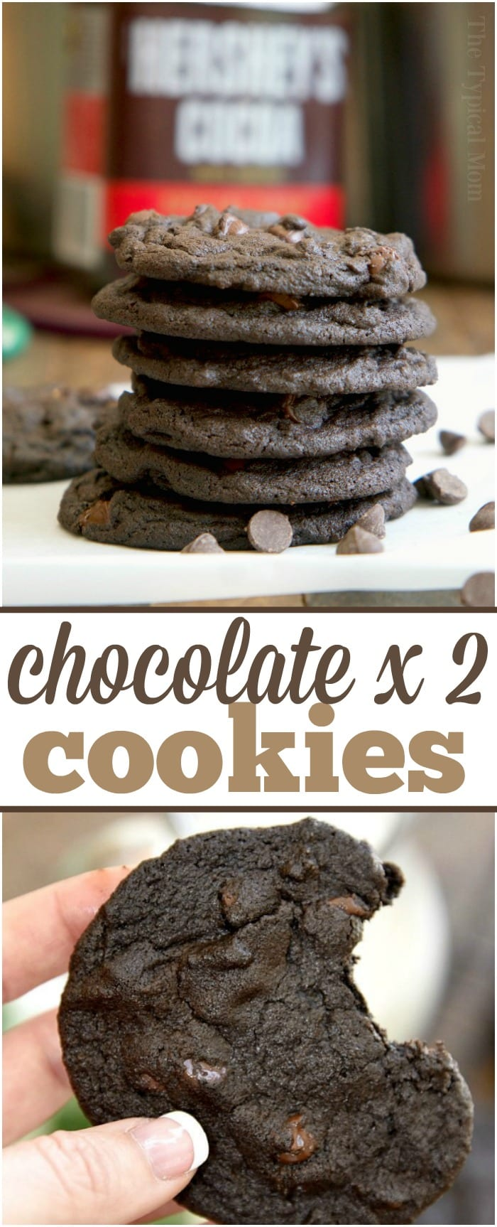 Chewy double chocolate chip cookies that are the softest you'll ever try. Dark chocolate with chocolate chips and as soft as a brownie, delicious!