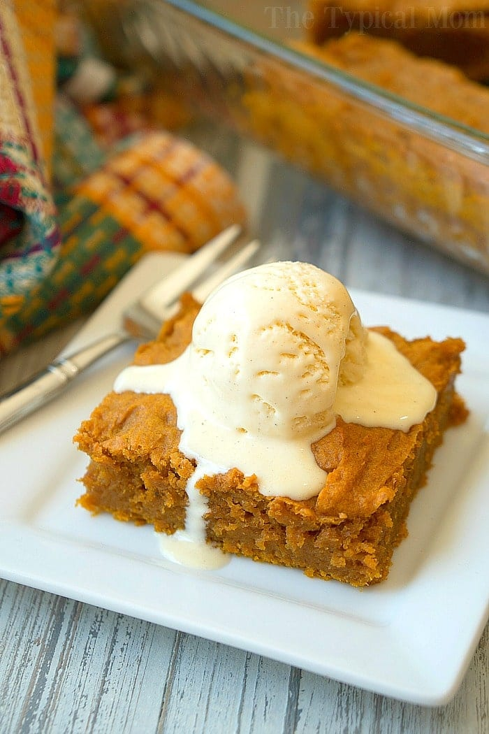 Easy Pumpkin Pudding Cake Recipe · The Typical Mom