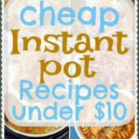 21 Cheap Instant Pot Recipes – Under $10 Each