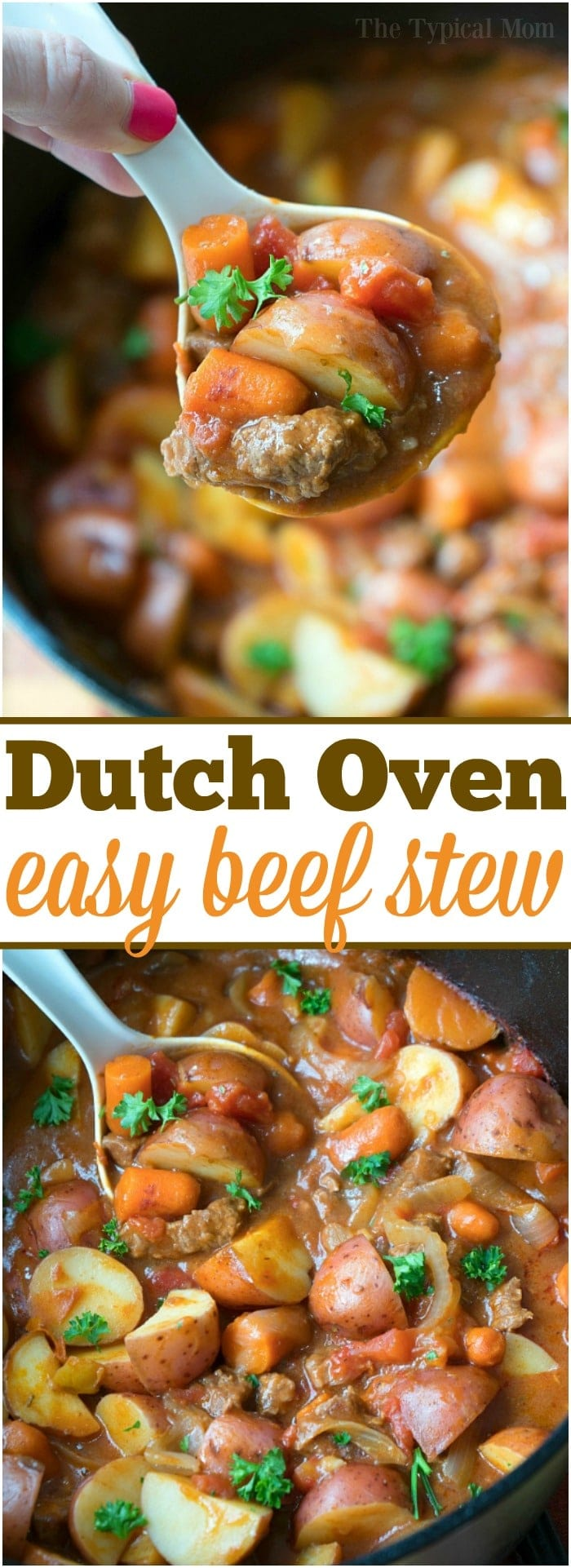 This easy Dutch Oven stew is hearty & will bring you back to your childhood! Packed with tender beef and vegetables it's the perfect dinner or camping meal. #dutchoven #stew #beef #easy #recipe #camping #meals #recipes