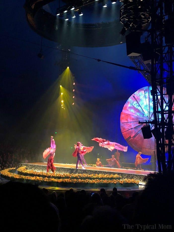 Cirque du Soleil Luzia Review 3