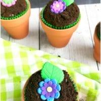 Flower Pot Cupcakes 2