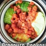 pressure cooker stuffed cabbage
