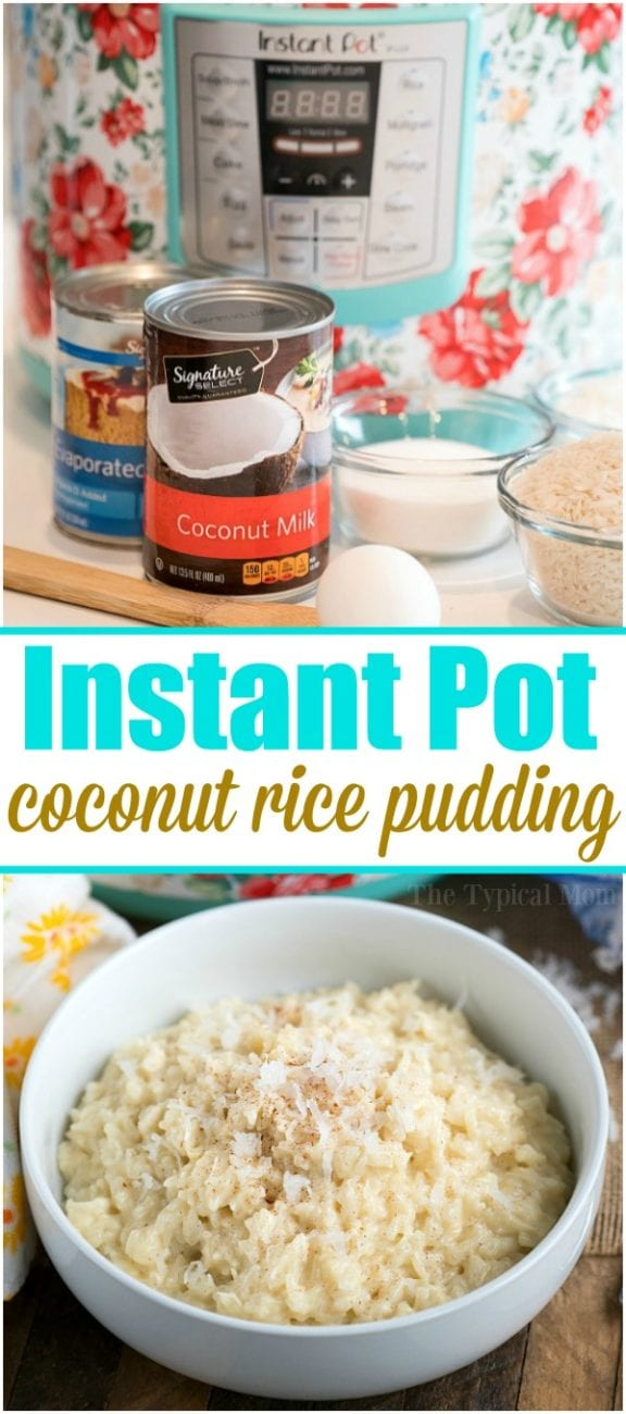 coconut rice pudding 2