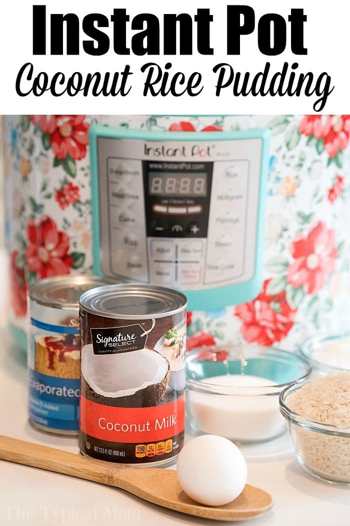 instant pot coconut rice pudding 2