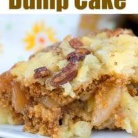 Gingerbread Dump Cake