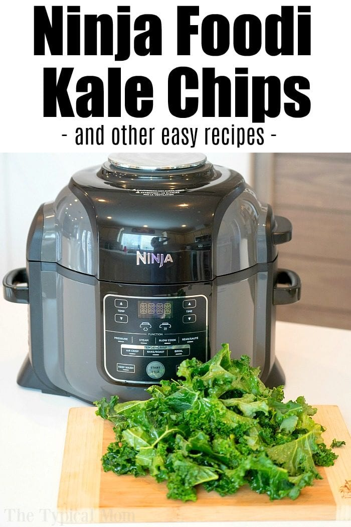 air fryer kale chips 2