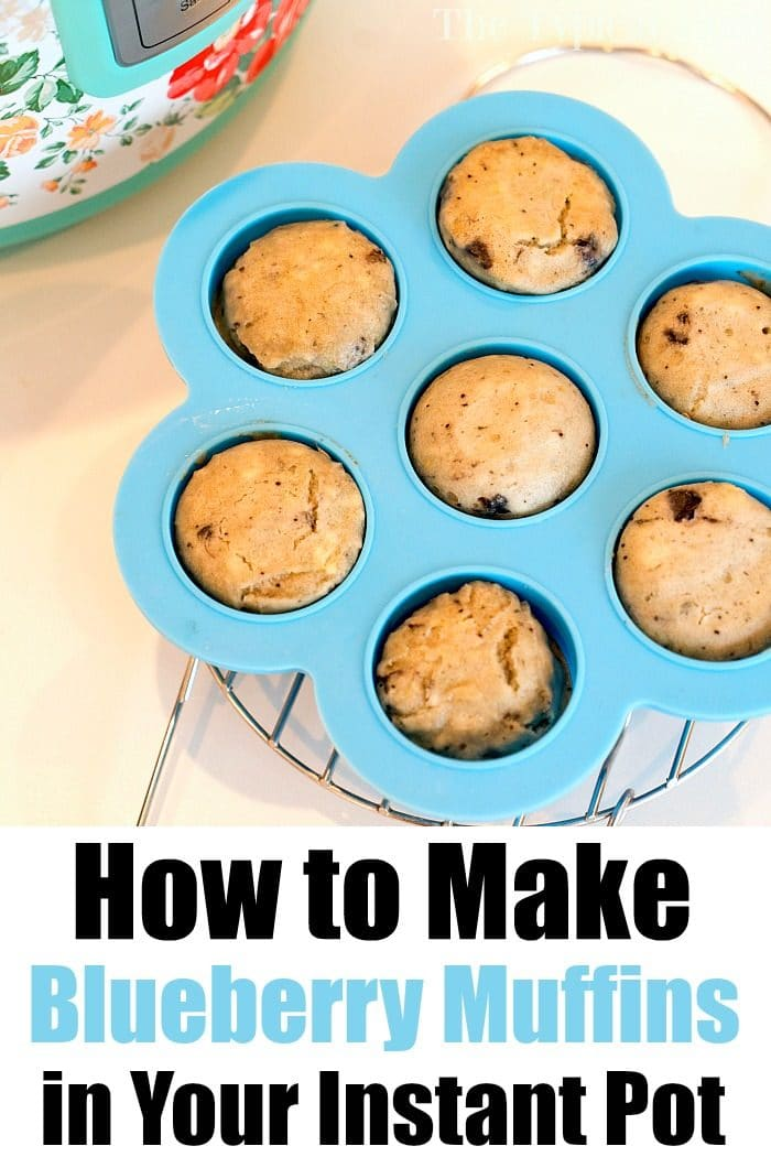 pressure cooker blueberry muffins