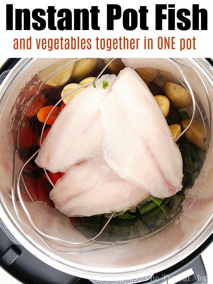 instant pot tilapia recipe
