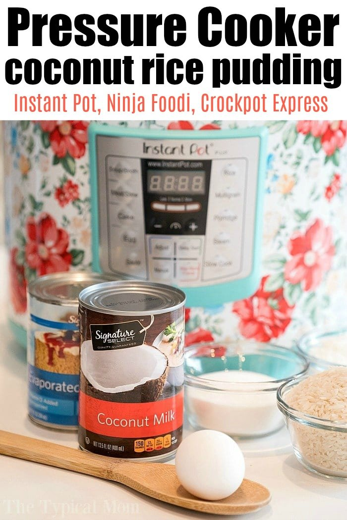pressure cooker coconut rice pudding