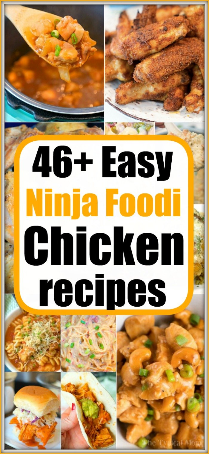 46 Ninja Foodi Chicken Recipes New Greek Chicken Kebab Recipe
