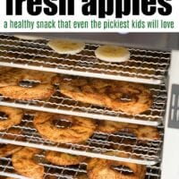 How to Dehydrate Apples