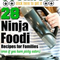ninja foodi cookbook