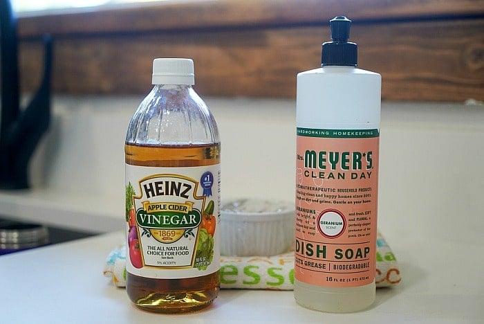 natural gnat repellent