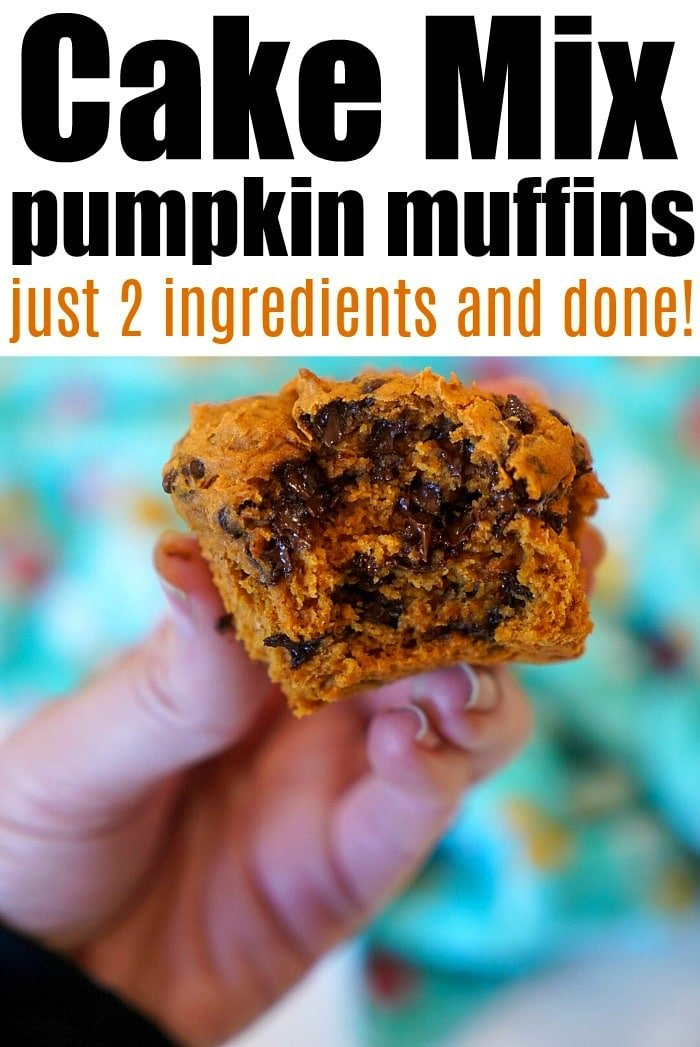 2 ingredient pumpkin bread