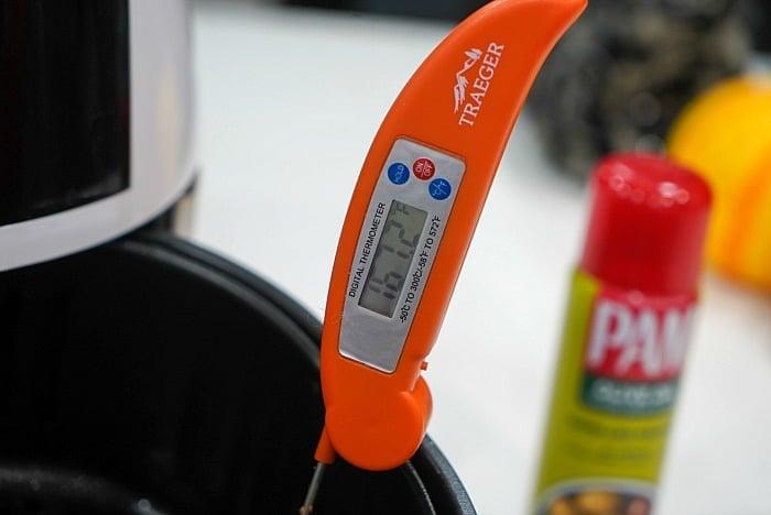 safe internal meat temperature