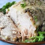frozen pork roast instant pot