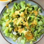 Frozen Broccoli Instant Pot recipe
